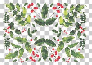 Floral Design Leaf Aquifoliales Circle Pattern PNG