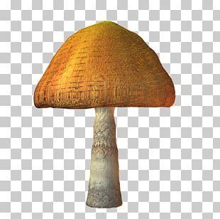 Mushroom TinyPic Video PhotoScape PNG