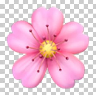 Emoji Domain Flower Sticker Emoticon PNG