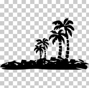 Photography Wall Decal Arecaceae PNG