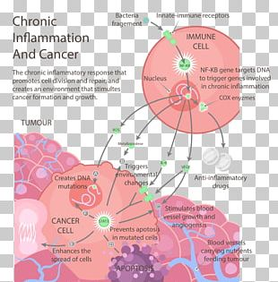 Cancer The Inflammation Free Diet Chronic Condition Health PNG