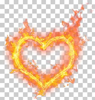 Fire Flame Love PNG