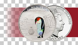 Flightless Bird Currency PNG