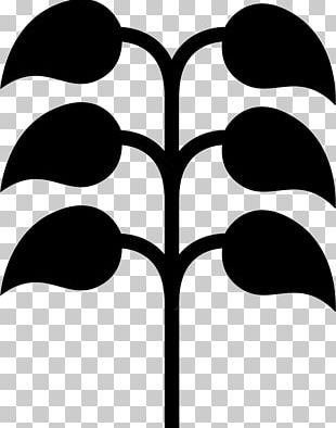 Leaf Shape Computer Icons PNG