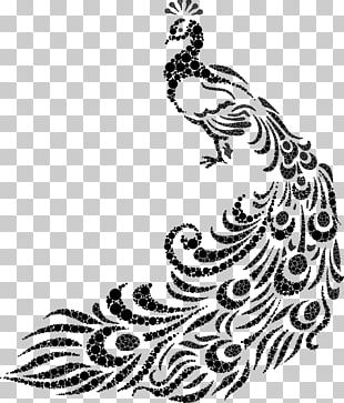 Peafowl Drawing Line Art PNG