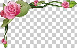 Frames Borders And Frames Paper Flower Decorative Arts PNG