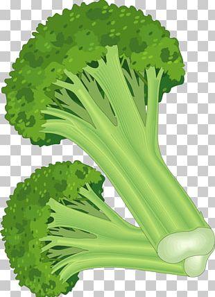 Leaf Vegetable Fruit Carrot PNG