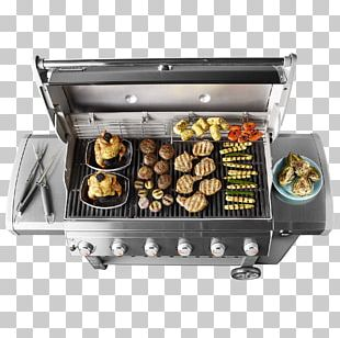 Barbecue Weber-Stephen Products Natural Gas Propane Gasgrill PNG