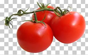 Chicago Botanic Garden Tomato Churrasco Vegetable Antioxidant PNG