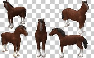 Mustang Spore Creatures Clydesdale Horse Foal PNG