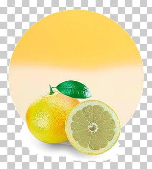 Lemon Juice Grapefruit Mandarin Orange Lime PNG