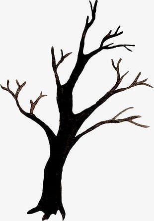 Halloween Branches PNG