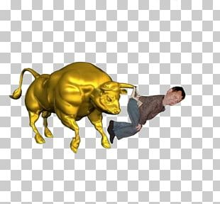 Bull Stock Photography Drawing PNG