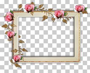 Frames Portable Network Graphics Garden Roses Digital Photo Frame PNG