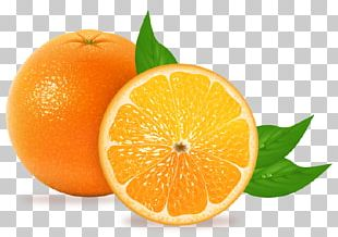 Blood Orange Tangelo Juice Tangerine Mandarin Orange PNG