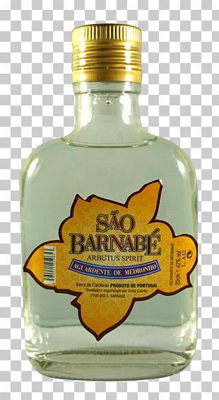 Liqueur Glass Bottle Whiskey Liquid PNG