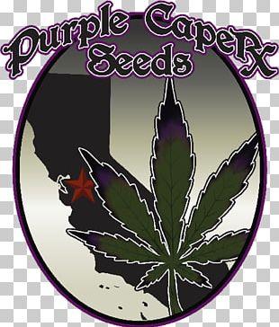 Seed Bank Autoflowering Cannabis White Widow Seed Company PNG