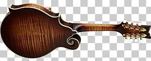 Acoustic-electric Guitar Musical Instruments Classical Guitar PNG