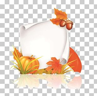 Autumn PNG