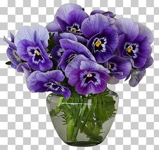 Violet Flower Vase Purple Pansy PNG