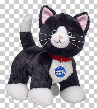 Kitten Whiskers Siamese Cat Stuffed Animals & Cuddly Toys Promise Pets By Build-A-Bear PNG