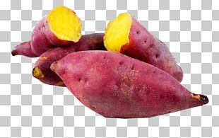 Sweet Potato Nutrition Vegetable Yam PNG