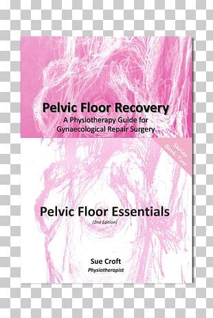 Pelvic Floor Dysfunction Rectocele Hysterectomy Surgery PNG