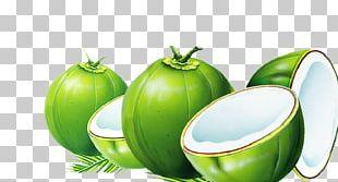 Dodol Coconut Water Nata De Coco Coconut Milk PNG