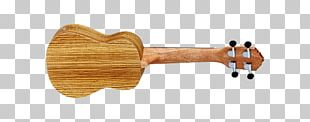 NAMM Show String Instruments Musical Instruments Guitar Ukulele PNG
