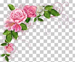 Pink Flowers Rose Sticker Color PNG