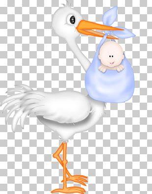 Wedding Invitation Baby Shower Stork Infant PNG