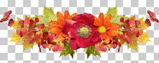 Floral Design Cut Flowers Flower Bouquet Transvaal Daisy PNG