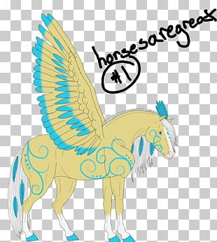 Illustration Beak Feather Animal PNG