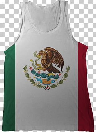 Flag Of Mexico Flag Of India PNG