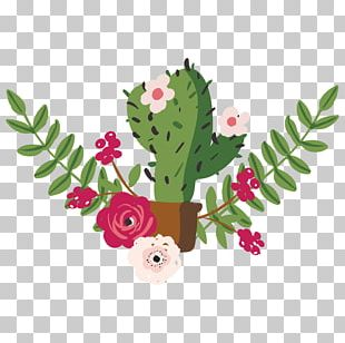 Drawing Cactaceae Painting PNG