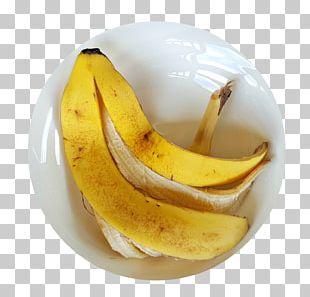 Banana Bread Banana Peel Cooking Banana PNG