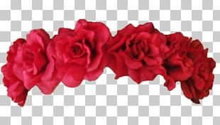 Garden Roses Red Wreath Flower Crown PNG
