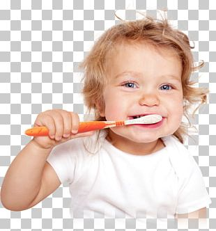 Tooth Brushing Child Teeth Cleaning Human Tooth Infant PNG
