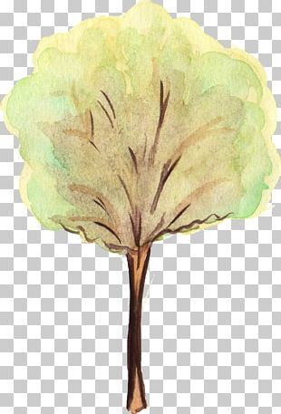 Tree Leaf Watercolor Painting PNG