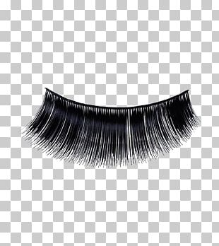 Eyelash Extensions Cosmetics Peggy Sage Make-up PNG