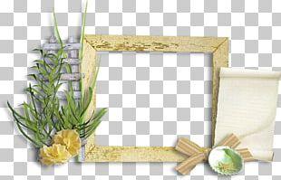Frames Borders And Frames Floral Design PNG