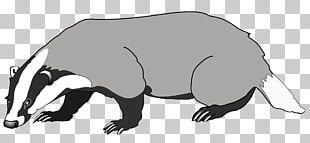 Honey Badger European Badger PNG