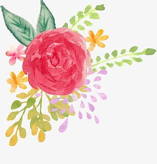 Hand-painted Watercolor Flower PNG