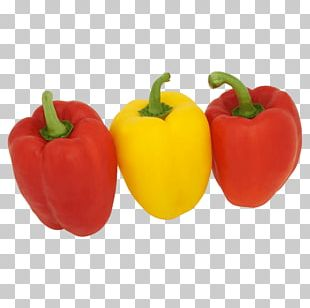 Chili Pepper Yellow Pepper Bell Pepper Malta Warehouse Peppers PNG