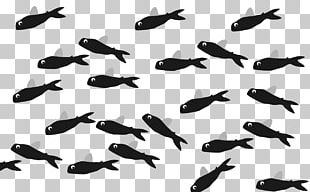 Flying Fish Meter Length Seahorse PNG
