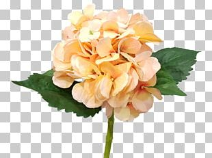 Hydrangea Cut Flowers Artificial Flower Flower Bouquet PNG