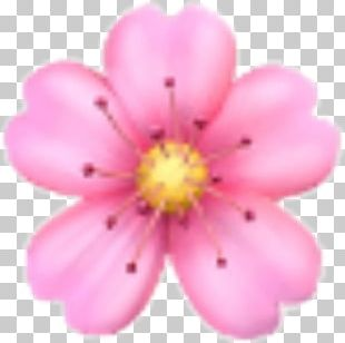 Emoji Domain Flower Sticker PNG