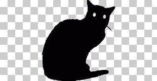 Black Cat Bombay Cat Manx Cat Kitten Whiskers PNG
