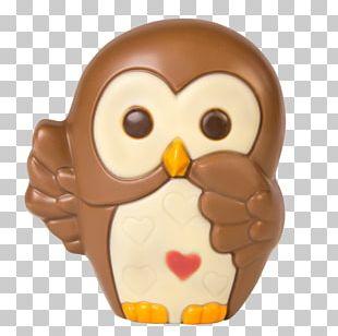 Owl Beak Brown PNG