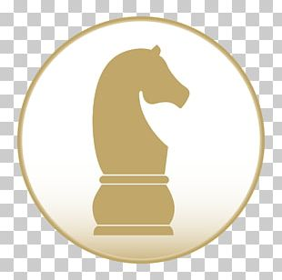 Chess Piece Knight Graphics Chessboard PNG